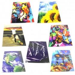 Wholesale 2 Pocket  Fancy Folders $0.35 Each.