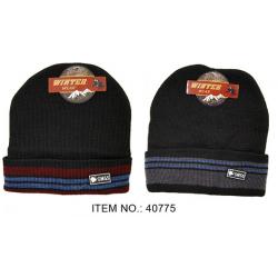 Winter Sport Men's Hat $1.35 Each.