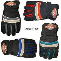 Adult Ski Gloves $2.59 Each.