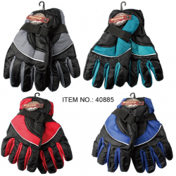 Ladies Ski Gloves $2.59 Each.