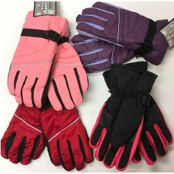 CLOSE OUT! Winter Ski Gloves $2.00 Ea.